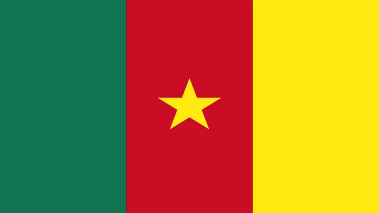 Travcour Cameroon Visa Application