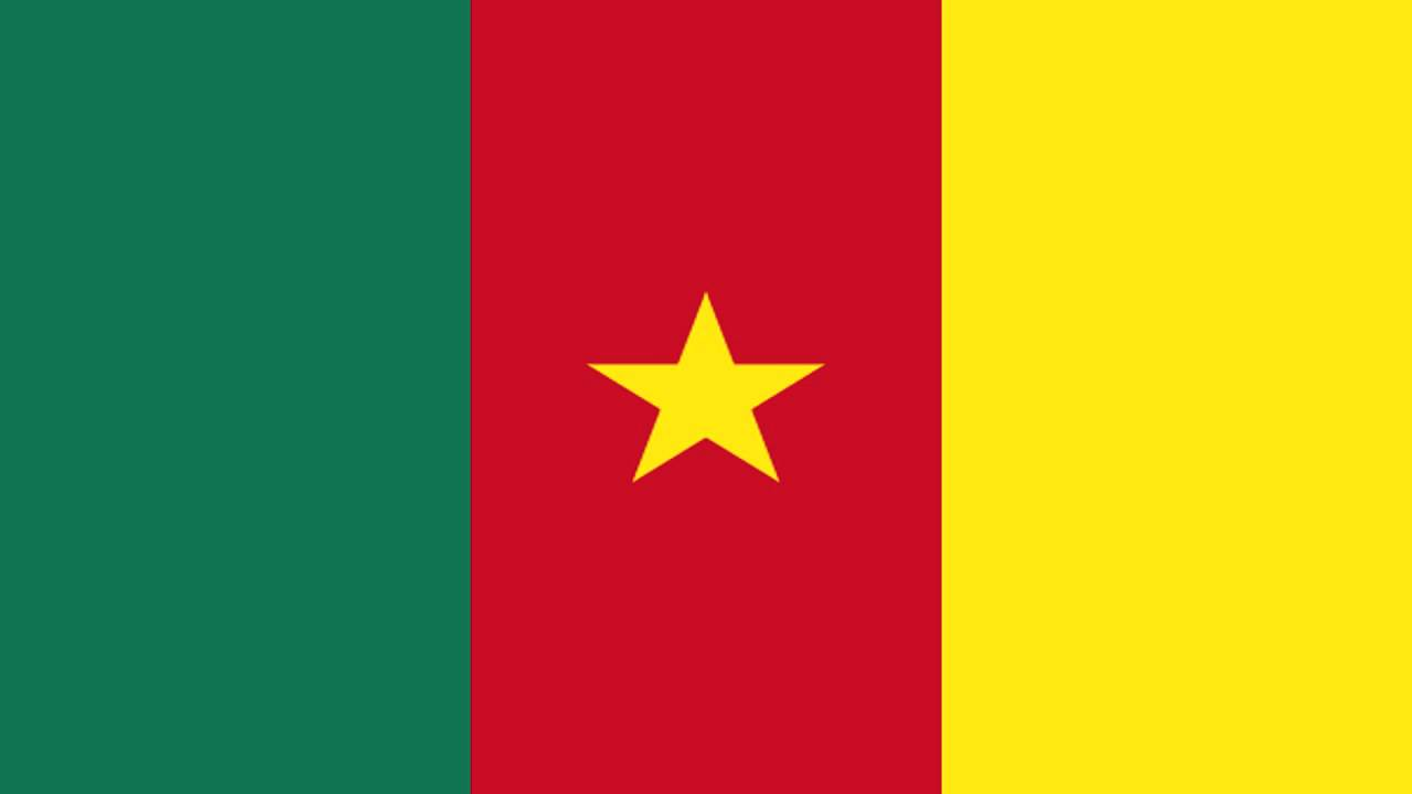 Travcour Cameroon Visa Application