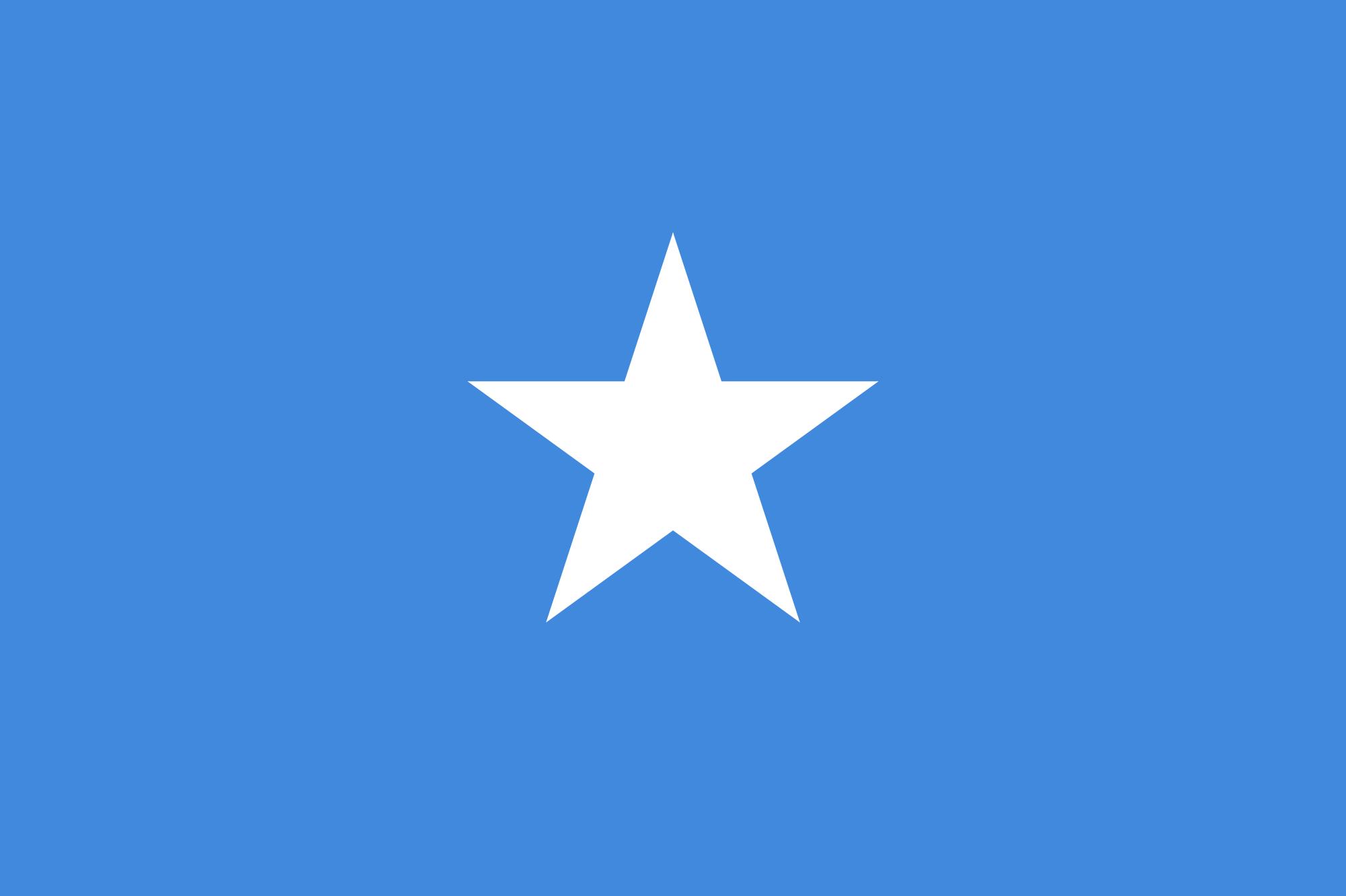Travcour Somalia Visa Application