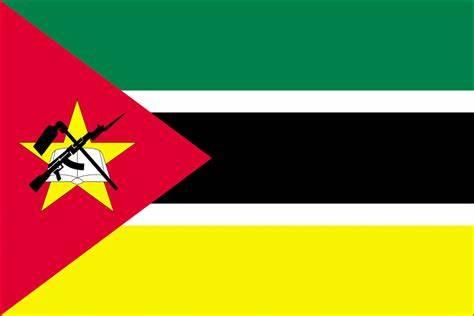 Travcour Mozambique Visa Application
