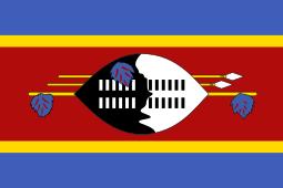 Travcour Swaziland Visa Application